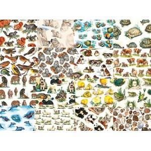 http://porexcut.com/5352-10471-thickbox/planchas-de-60-x-40-cms.jpg