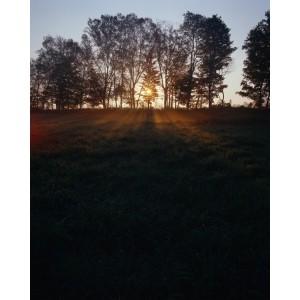 http://porexcut.com/5965-7250-thickbox/landscape.jpg
