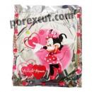 Minnie party bag.